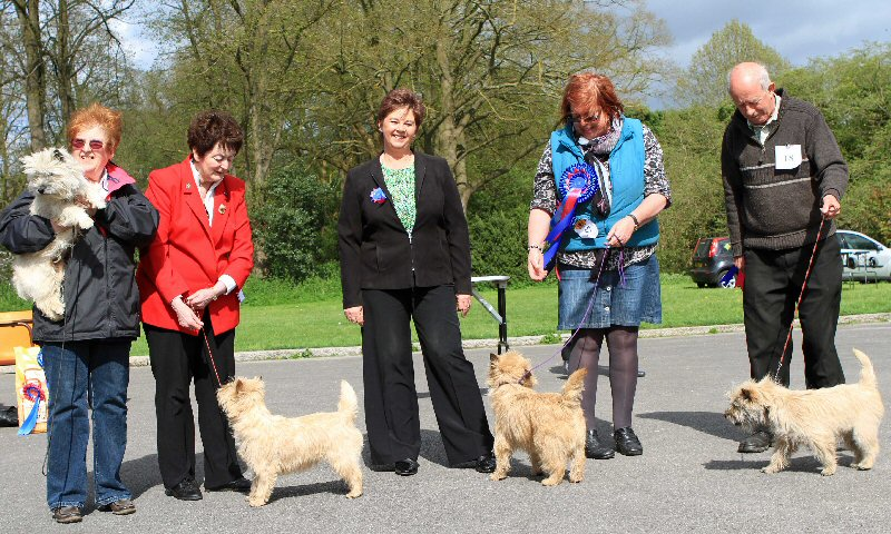 Southern Cairn Terrier Club